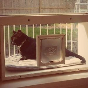 The Cat Solarium Sun Room Package Save $53.98