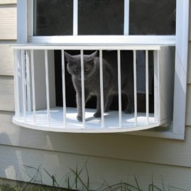 Cat Window Box