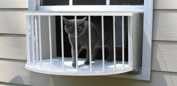The Cat Solarium Veranda Package Save $49.97
