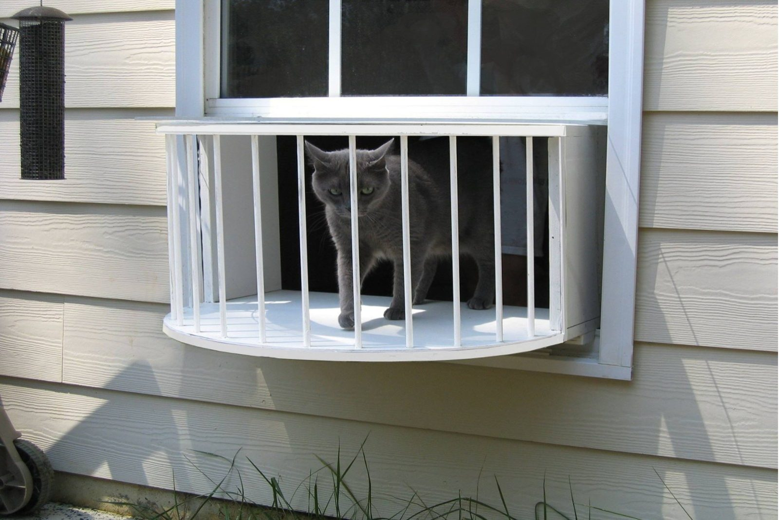 Amazing Cat Perch, Cat Solarium, Cat Window Box, Cat Window Door, Cat Window Perch,  Cat Veranda, Cat Window Bed, Cat Window Seat, Modern Cat Perch, Cat  Windowsill ...
